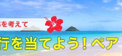 素敵な名称を考えるとハワイ旅行が当たる!