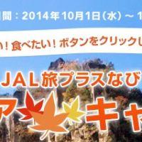 JALで行く、九州線往復航空券が3名様に当たるキャンペーン