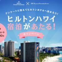 人気のヒルトンハワイ宿泊が当たる海外旅行懸賞!
