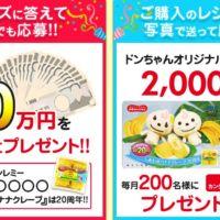 クイズに答えて現金20万円が当たる豪華高額懸賞!