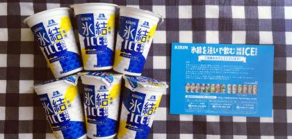 キリンのクローズド懸賞で「氷結専用 ICEBOX」が当選!
