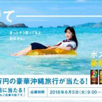 家族で100万円分の「豪華沖縄旅行」が当たる高額懸賞!
