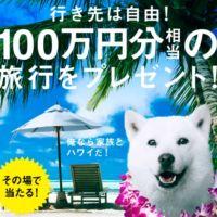 LINEで100万円分のJCBギフトカードが当たる高額懸賞!