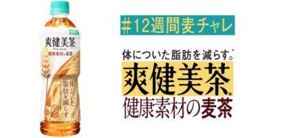 毎週動画視聴で豪華賞品があたる爽健美茶のキャンペーン!