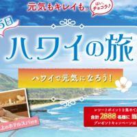 ハワイ旅行が当たる海外旅行懸賞!(3回応募可能)