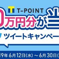 リツイートするだけで100万円分のTポイントが当たる高額懸賞!
