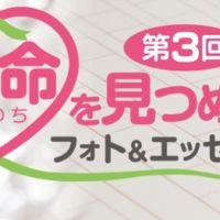 生命(いのち)を見つめるフォト&エッセーコンテスト!