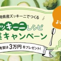 現金、宮崎牛、宮崎マンゴーが当たるズッキーニレシピ投稿キャンペーン!
