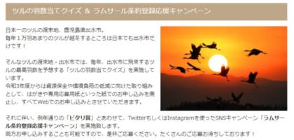 飛来する鶴の羽数を当てて10万円分の旅行券が当たる高額懸賞!